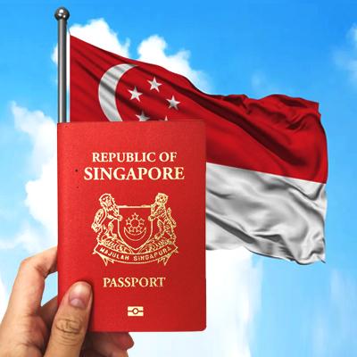 Singapore Visa Image