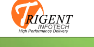 TRIGENT SOFTWARE PRIVATE LIMITED's logo